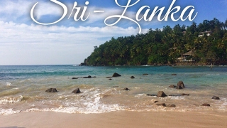 Our trip to Sri-Lanka