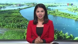 Nông thôn mới Hải Phòng(12/2/2019): Hiệu quả vụ Đông ở Tiên Lãng