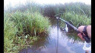 Рыбалка на Реке Брынь вечером и утром