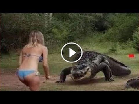 угарные видео чернуха