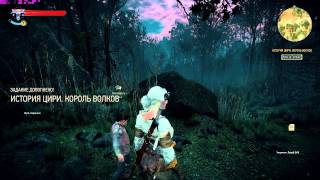 "The Witcher 3 SweetFX ""1.000 Times Better 1.3"" + setting.ini"