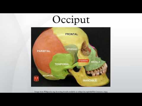 Watch on anatomical position