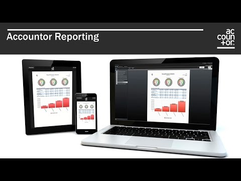 Accountor Reporting - Financial Reporting in Russia