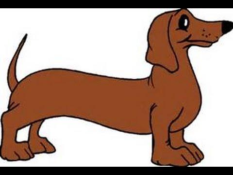 Wiener Dog Song