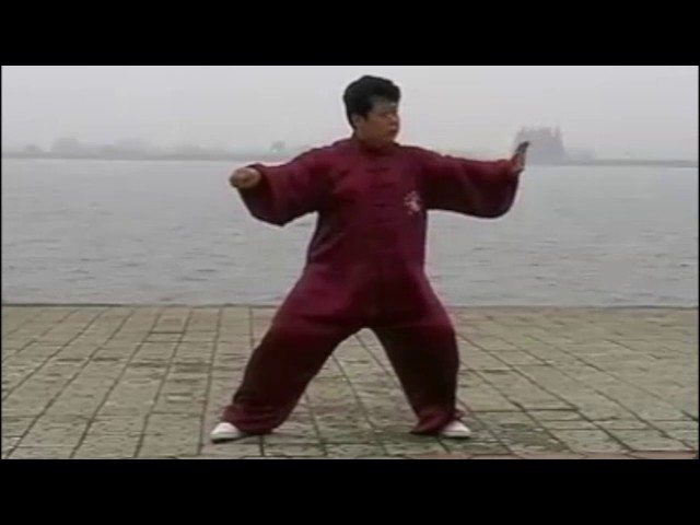 Chen Yu  - Tai Chi style Chen Xinjia Yilu [陈氏太极拳新架 Taijiquan style Chen]