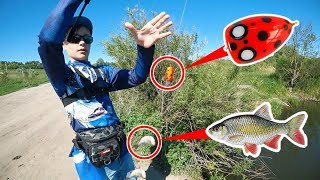 Рыбалка летом! Учу сына ловить на Попла-Поппер! Глебус на рыбалке с папой
