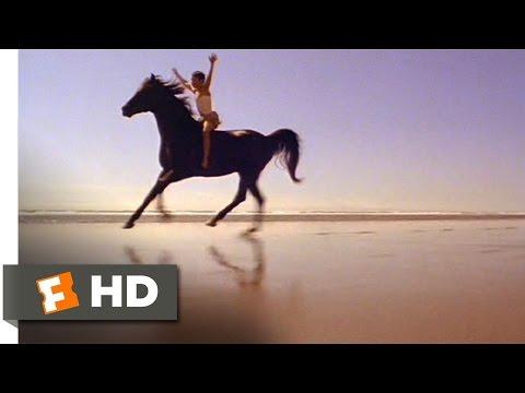 The Black Stallion (8/11) Movie CLIP - Riding the Stallion (1979) HD