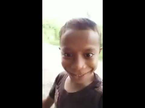 VIDEO VIRAL HELLO GUYS,RUMPUT JAGUNG GUYS!