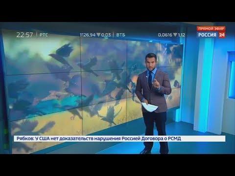 """Ельцин-центр"" атакуют вороны"