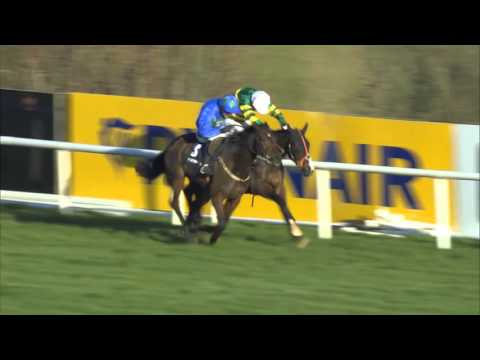 A Tribute to the King of Leopardstown - World Record Holder with 22 Grade 1 wins - Hurricane Fly