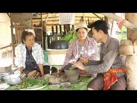 ทุกทิศทั่วไทย  : วิธีเพาะเลี้ยงหนอนสำหรับเลี้ยงนก จ.นครศรีธรรมราช (7 ก.ค. 57)