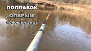 Поплавок Опарыш Хороший улов Вечерняя рыбалка принесла не плохой улов на реке