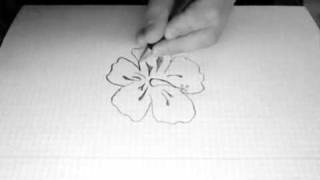 how to draw an hibiscus