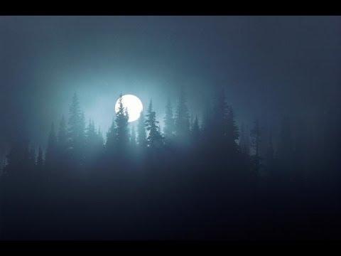 Самый Страшный Зверь (история из леса)