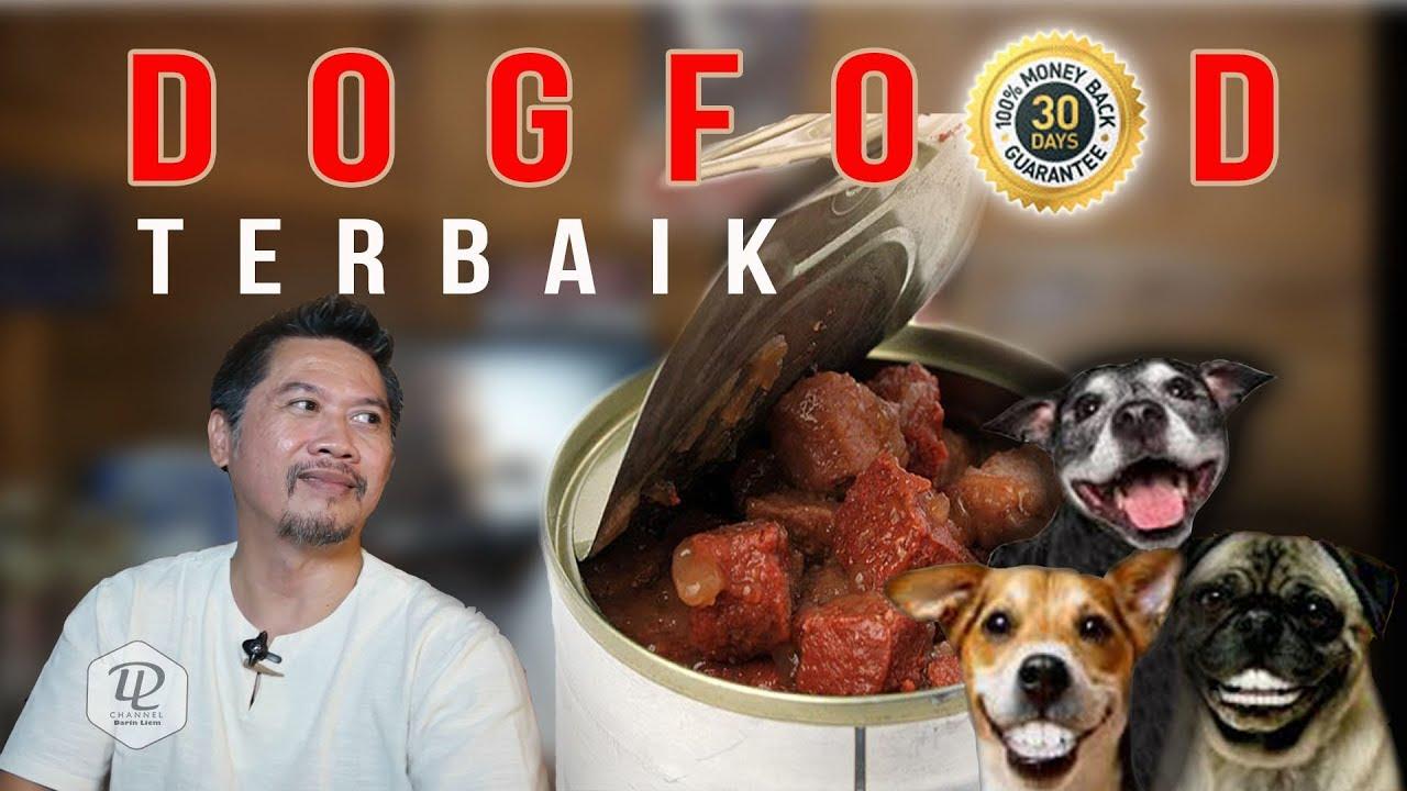 Mencari Dogfood Makanan Untuk Anjing Terbaik Youtube