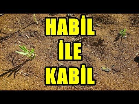 Habil ile Kabil kıssası - ilk insan katli