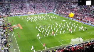 vuclip Opening ceremony UEFA Europa League Final 2014