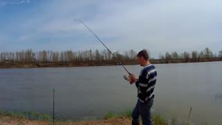 Ахтуба( НОВОЕ ). Кап.Яр. Ловля белой рыбы.