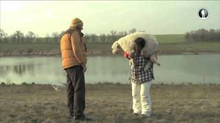 Планета собак. Южнорусская овчарка