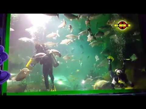 น้องวินซ์ท่องสวนสัตว์เชียงใหม่และ Chiang-Mai Aquarium
