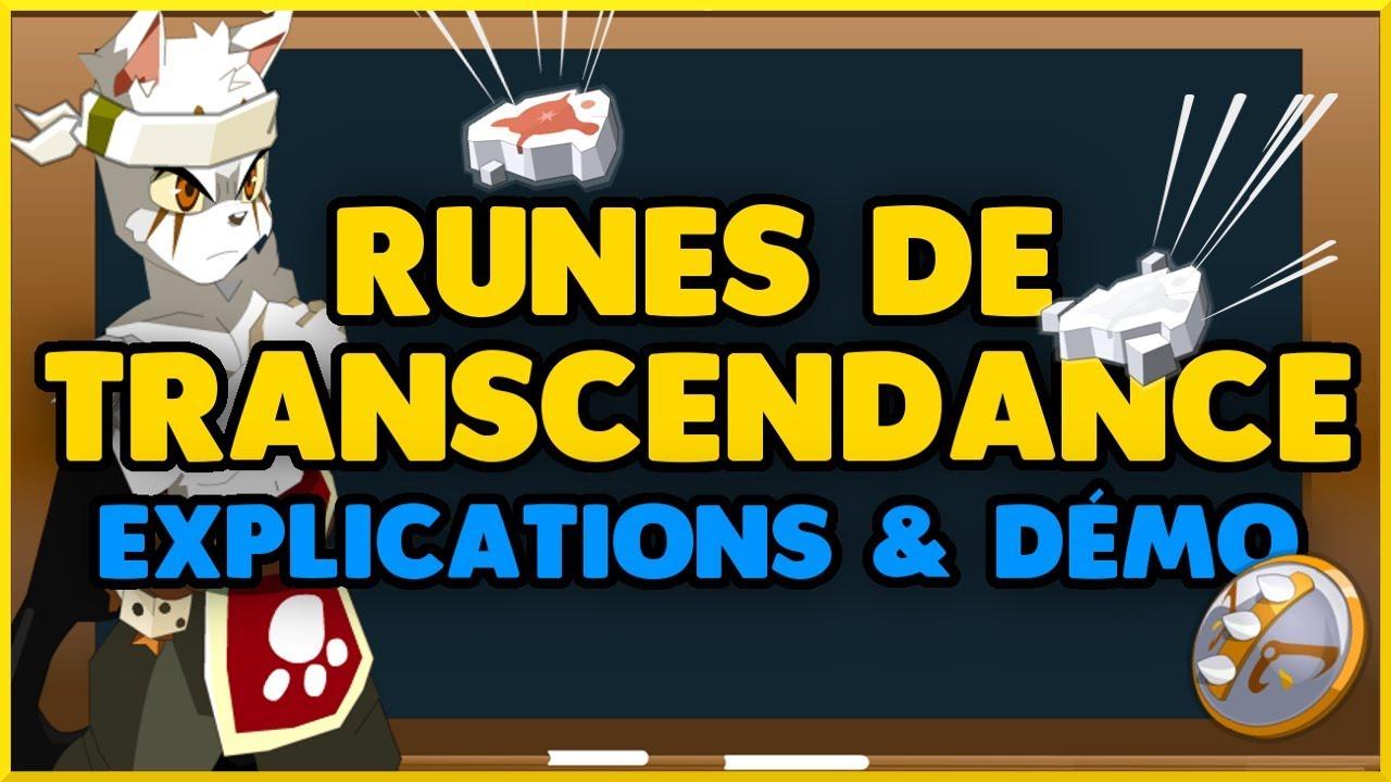 Runes De Transcendance Leur Fonctionnement Utilisation Brisage Pa Dofus
