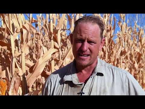 GROWER NATHAN HECKENDORF SHARES HIS SECRETS TO DRIVING YIELD