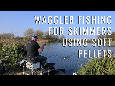 Waggler Fishing For Skimmers Using Soft Pellets