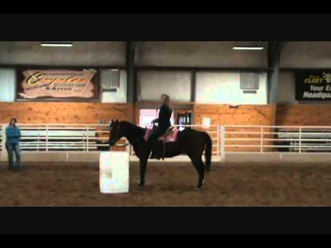 Charmayne James Demo Mn Equestrian Center Part 1 Youtube
