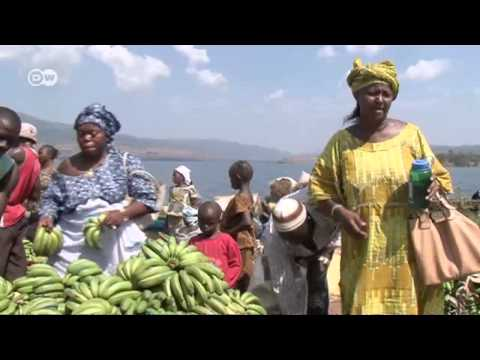African Stories: Bananas from Guinea - more business, more affluence | Global 3000