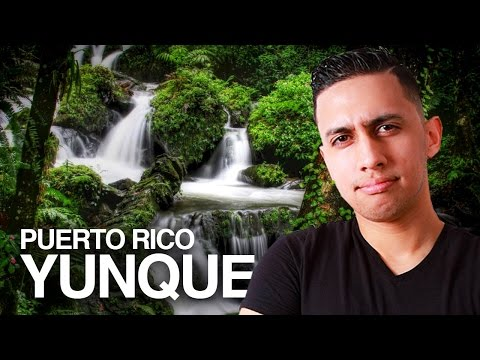 Exploring El Yunque Rainforest | Photography in Puerto Rico
