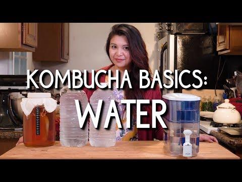 Kombucha Basics: Water