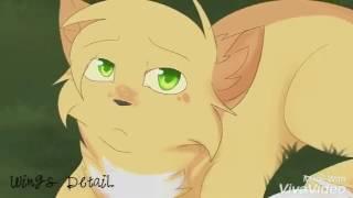 Коты Воители клип  Песчаная Буря, Белогривка,Синяя Звезда   знак Водолея