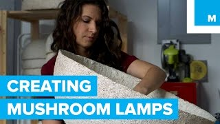 Sustainable Lamps Are Literally Grown From Mushrooms | Mashable