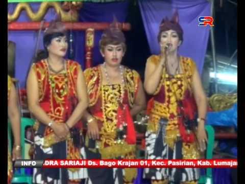 Tayub Panjilaras Lumajang Part 5