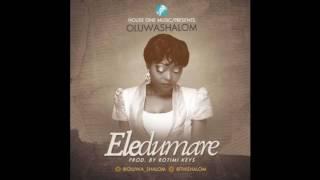 OluwaShalom - Eledumare