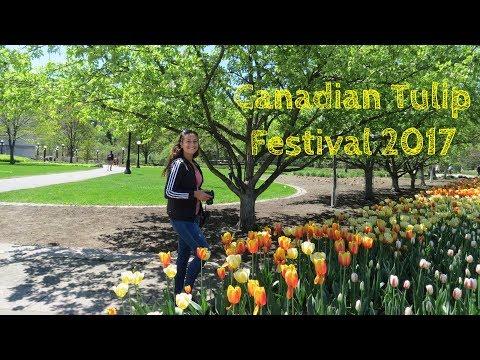 Canadian Tulip Festival || Ottawa 2017