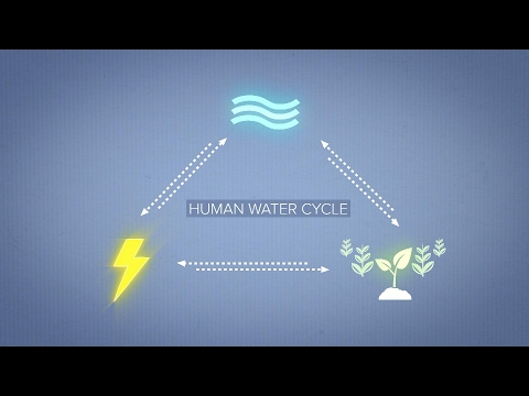 Human Water Cycle: Water, Food, & Energy