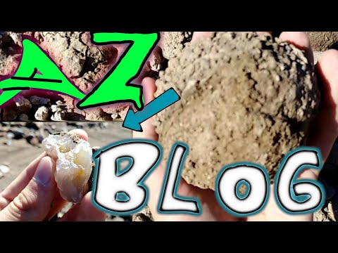 Arizona Fossil And Agate Hunting | The Weekly Blog EP1