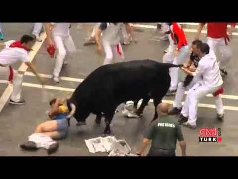 Neden rüya: boğalarla boğa saldırıları, siyah boğa, boğadan kaçmak