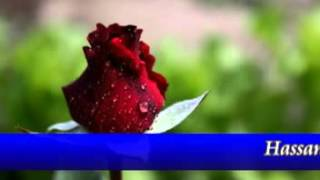 Mere Pyar Ki Umar Ho Itni Sanam ^^Romantic Duet Song^^