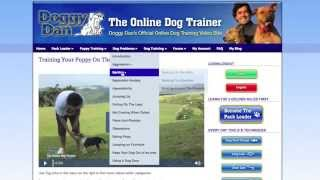 The Online Dog Trainer Review | Solve All Your Dog And Puppy Problems Now.