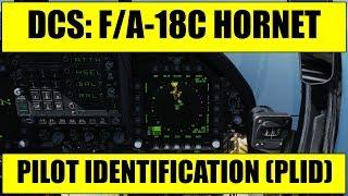 DCS: F/A-18C Hornet - SA Page, Pilot Identification (PLID)