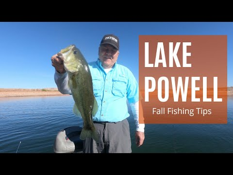 Lake Powell Fall Fishing - Smallmouth & Largemouth Bass Tips