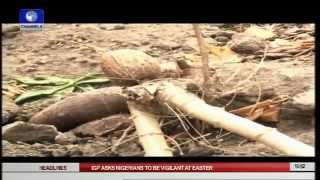 Earth File: Challenges of Farmers In Nigeria Pt2