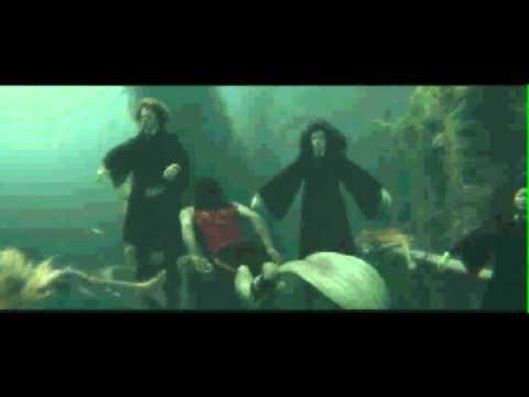 Harry Potter's Mermaids