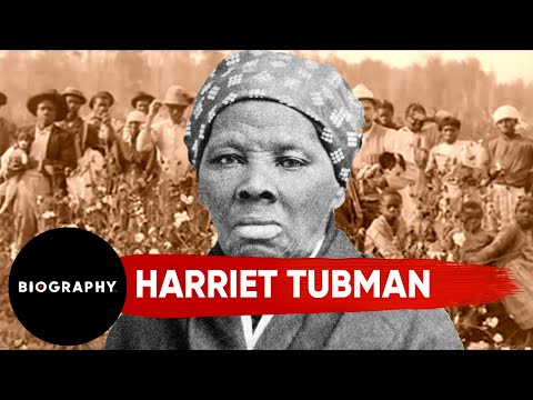 'I Could Have Freed a Thousand More Slaves If They Knew They Were Slaves' | Harriet Tubman