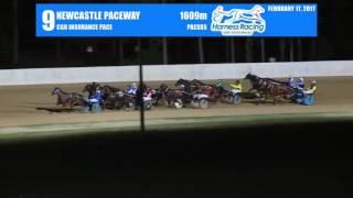 newcastle 17 02 2017 race 9 cgu insurance pace