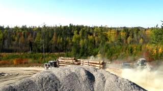 Peterbilt 359 Classic Treelength Logging