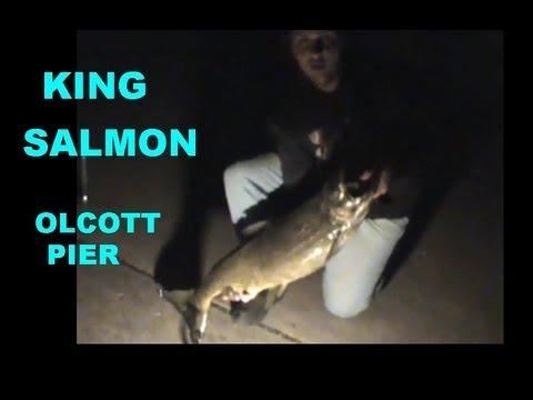 OLCOTT PIER KING SALMON