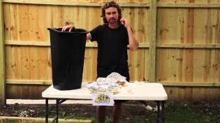 Al's Beef Ice Bucket Challenge